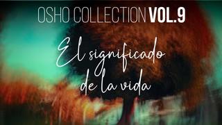 """La palabra """"sentido"""" es irrelevante para la vida - OSHO Talks Vol. 9"""