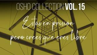 Date cuenta de que estás en una prisión - OSHO Talks Vol. 14