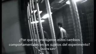 Reflexión sobre el experimento de la cárcel de Stanford, la maldad en el ser humano