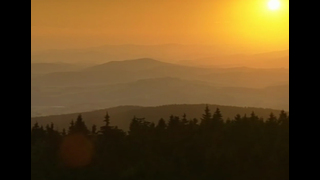 Bohemian Forest - Wilderness in the Heart of Europe