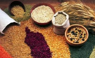 alimentación macrobiótica: crema de cereales