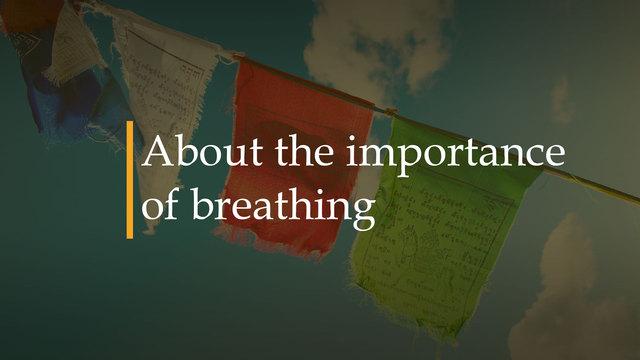 Sobre la importancia de la respiración