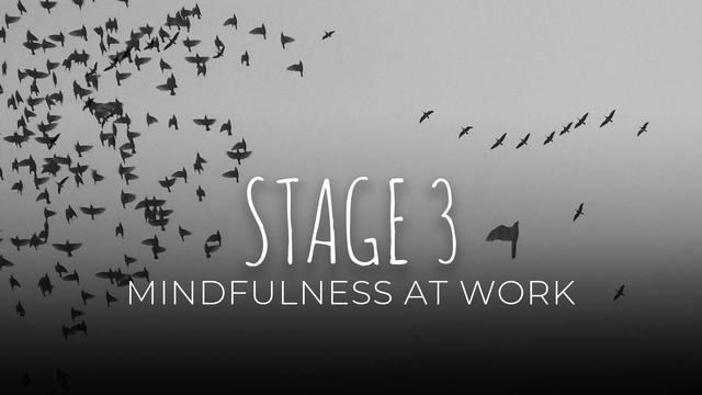 21 Mindfulness at work