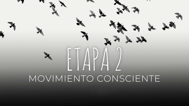15 - Movimiento consciente