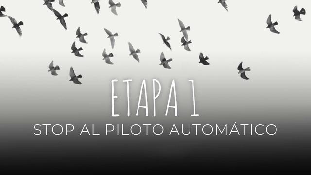 01 - Stop al piloto automático