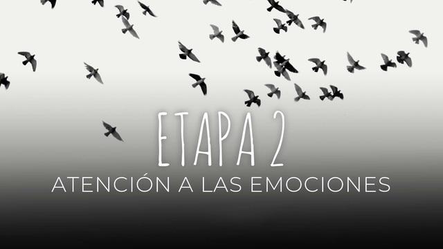 17 Atención a las emociones