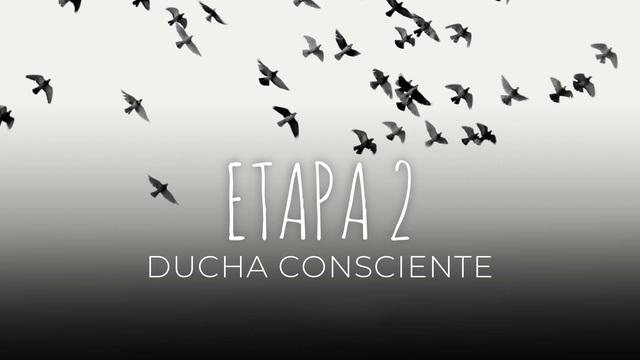 13 - Ducha consciente