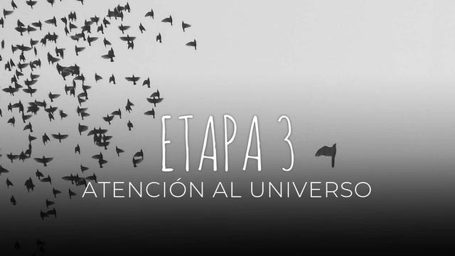 25 - Atención al universo