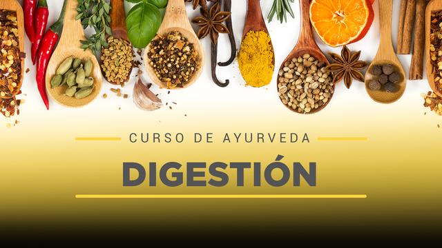 12 Digestión y ayurveda