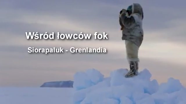 The Greenland Experience
