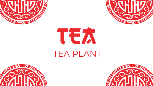The plant and cultivation of tea