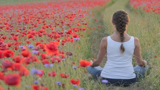 Celebra el Día Internacional del Yoga
